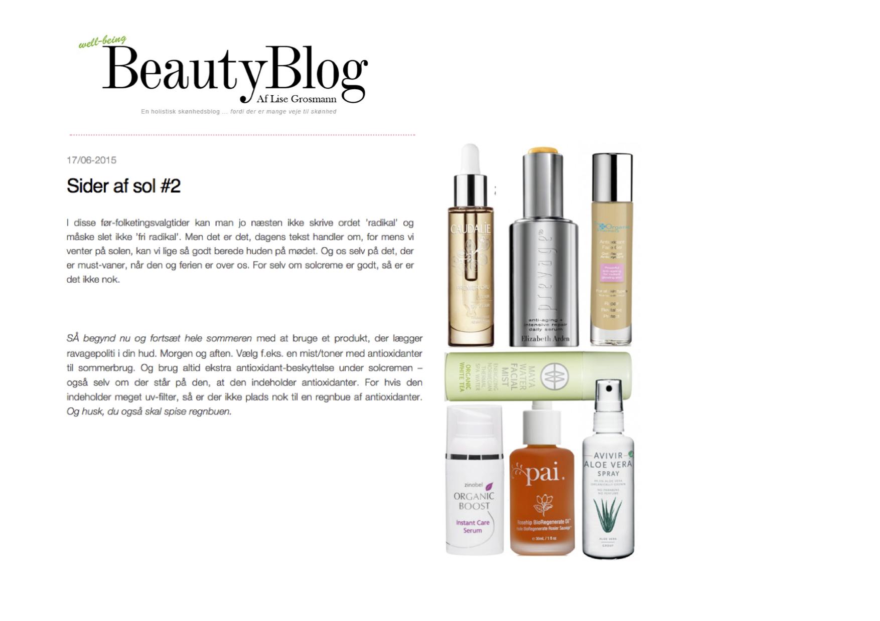 web beautyblogdk15
